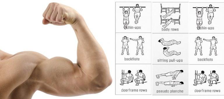 Los mejores ejercicios para biceps en casa