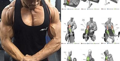 Los mejores ejercicios para brazos hombres